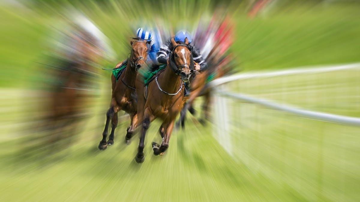 Taruhan Kuda Sangat Menyenangkan